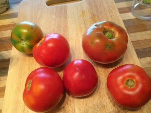 For a small fee, I could teach you how to tell which of these tomatoes will taste best