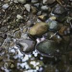 creek rock